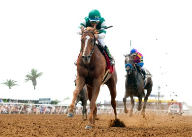 Stellar Wind cruised to victory by 4 1/4 lengths. © BENOIT PHOTO