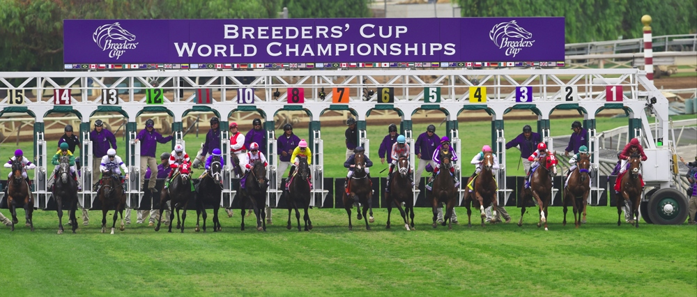 Analyzing the European Shippers in the BC Juvenile Turf