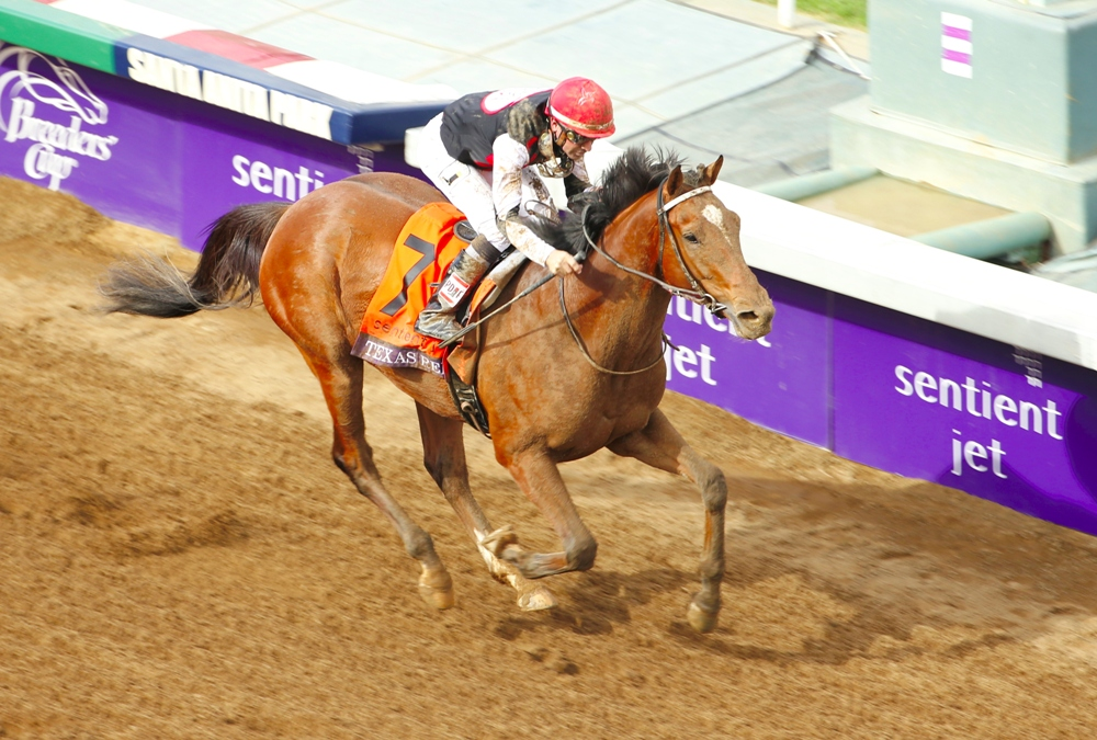 Daily Replay: The 2014 Breeders' Cup Juvenile