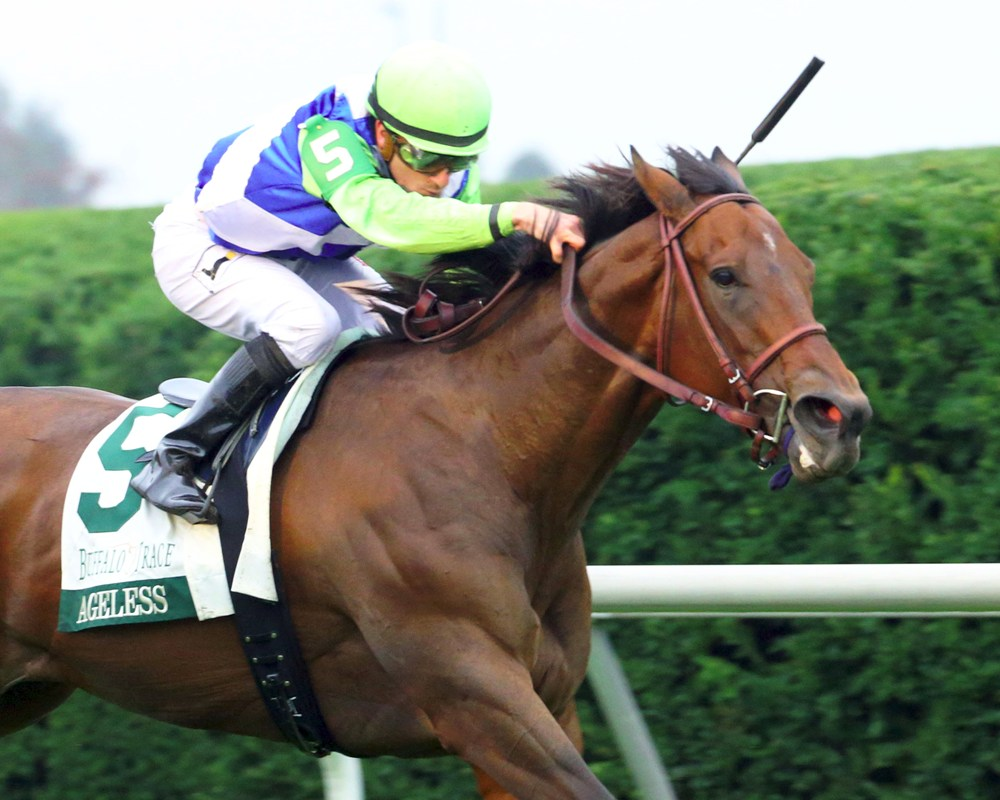 Ageless Will Pre-Enter Turf Sprint, But May Not Run