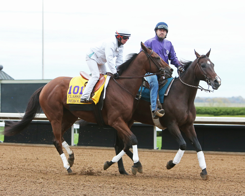 Beholder Will Scratch from the Breeders' Cup Classic