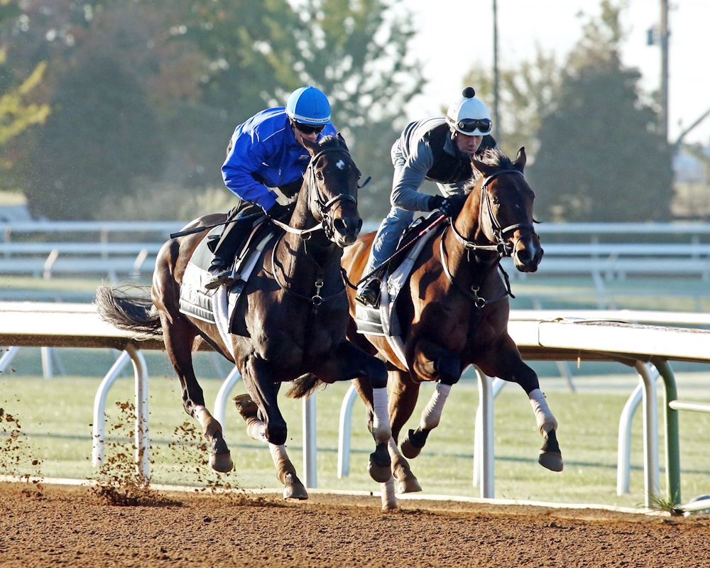 Camelot Kitten (inside) and Tweet Kitten (outside) working together at Keeneland - Keeneland Photo