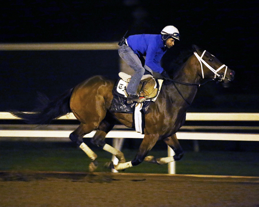 Dame Dororthy - Morning Workout - Keeneland Race Course - 102315