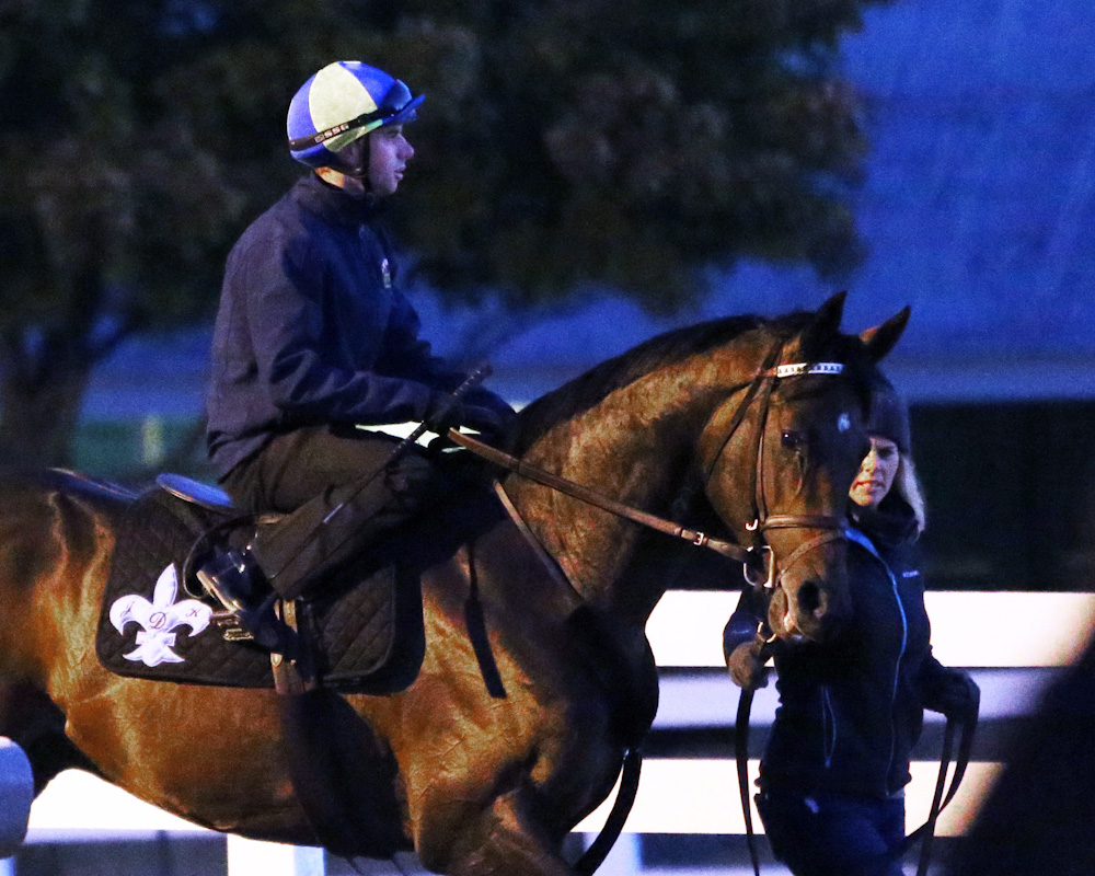 Exaggerator during morning training at Keeneland - Keeneland Photo