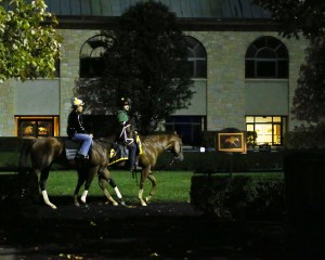 Fast Anna | Morning Training | Keeneland Race Course | 09-30-15