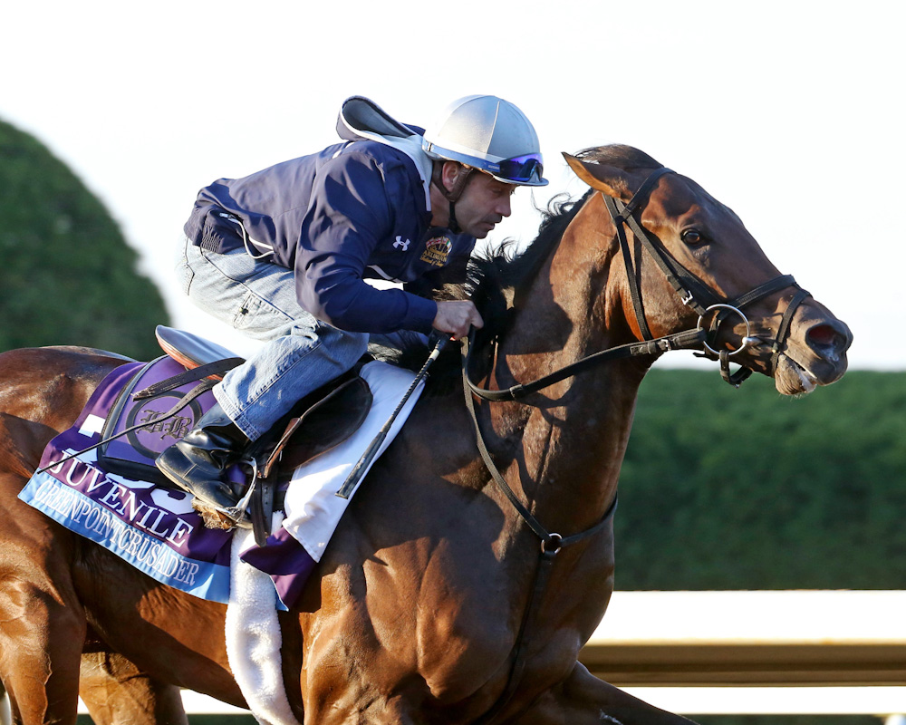 Greenpoint Crusader - Morning Workout - Keeneland Race Course -