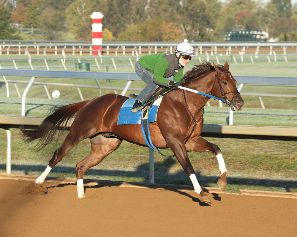 Holy Boss working at Keeneland - Keeneland Photo