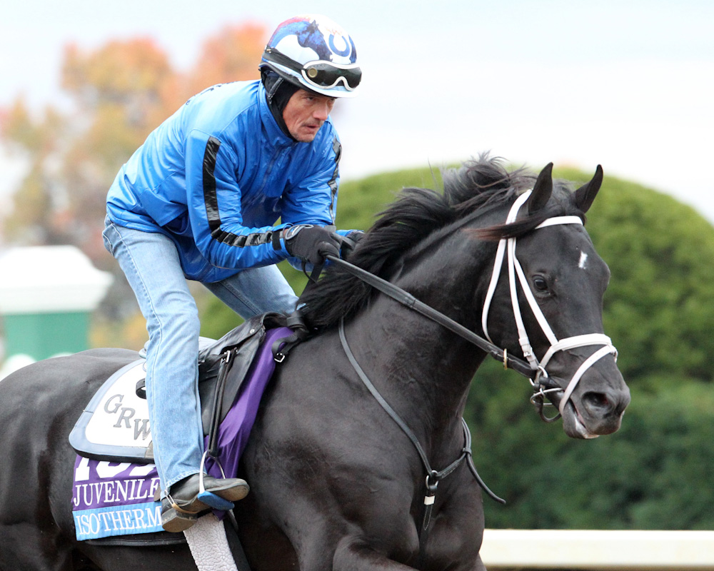 Isotherm - Morning Training - Keeneland Race Course - 102615