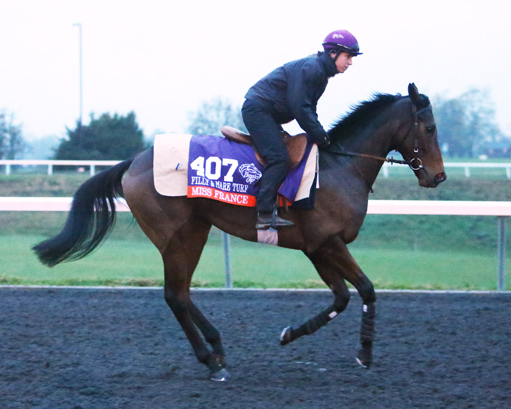 Miss France - Morning Training - Keeneland Race Course - 102715