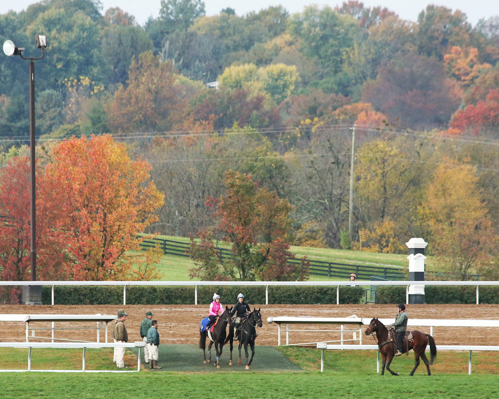 Nemoralia - Morning Workout - Keeneland Race Course - KEE - 1025