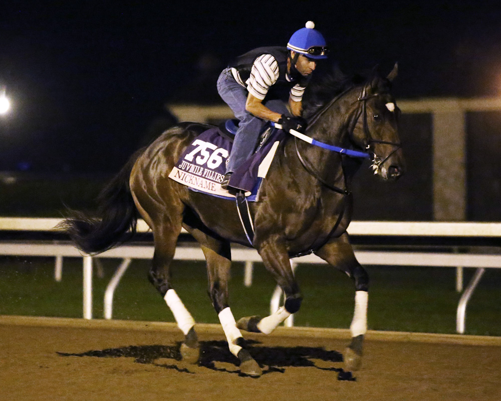Nickname - Morning Gallop - Keeneland Race Course - 102315