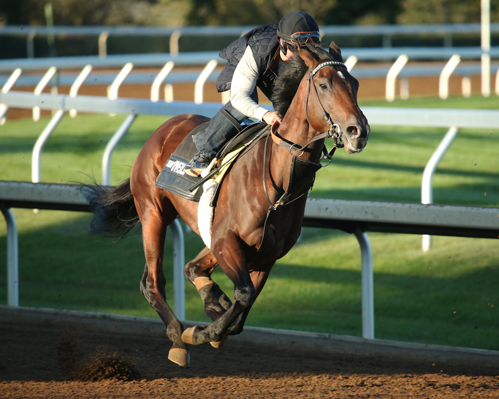 Ralis breezing at Keeneland - Keeneland Photo