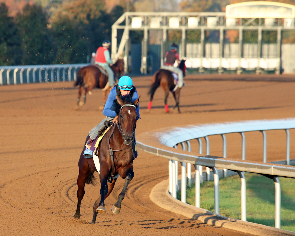 Ralis - Morning Workout - Keeneland Race Course - 102315