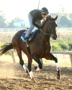 Runhappy training at Keeneland before the 2015 Breeders' Cup Sprint - Keeneland Photo