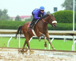 Salama, with Julien Leparoux in the saddle, breezes four furlongs on October 31st at Keeneland - Keeneland Photo