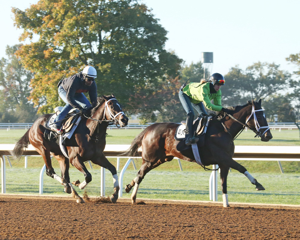 Stopchargingmaria (front) and Uncle Vinny (back) working at Keeneland - Keeneland Photo