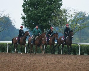 War Envoy | Outstanding | Easter | Morning Training | Keeneland