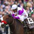Nyquist winning the 2015 Breeders' Cup Juvenile (gr. I) at Keeneland - Breeders' Cup Photo (c)
