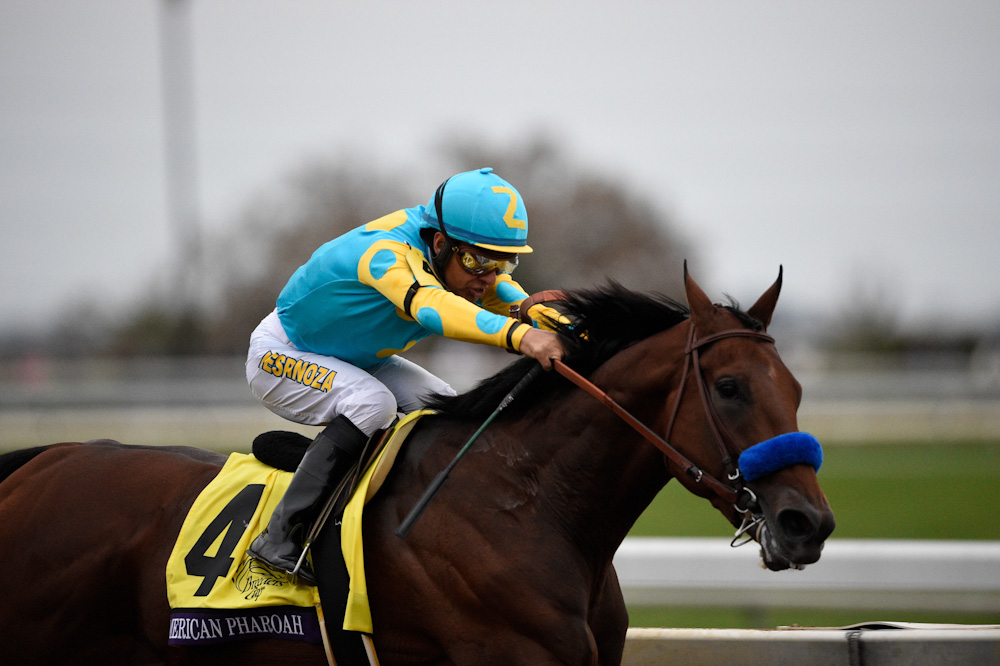 Slideshow: American Pharoah Wins the Breeders' Cup Classic