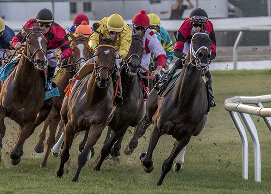 Chocolate Ride,right, with jockey Florent Geroux aboard turns for home and goes on to win the Fair Grounds Handicap (Gr III) at the Fair Grounds Race Course, Saturday, February 20, 2016. Photo by Lou Hodges, Jr. / Hodges Photography