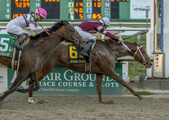 Gun Runner, No 6, with jockey Shaun Bridgmohan aboad, drives to the wire to win the Risen Star Stakes (GrII) at the Fair Grounds Race Course in New Orleans, LA Saturday, February 20, 2016. Photo By Lou Hodges, Jr. / Hodges Photography
