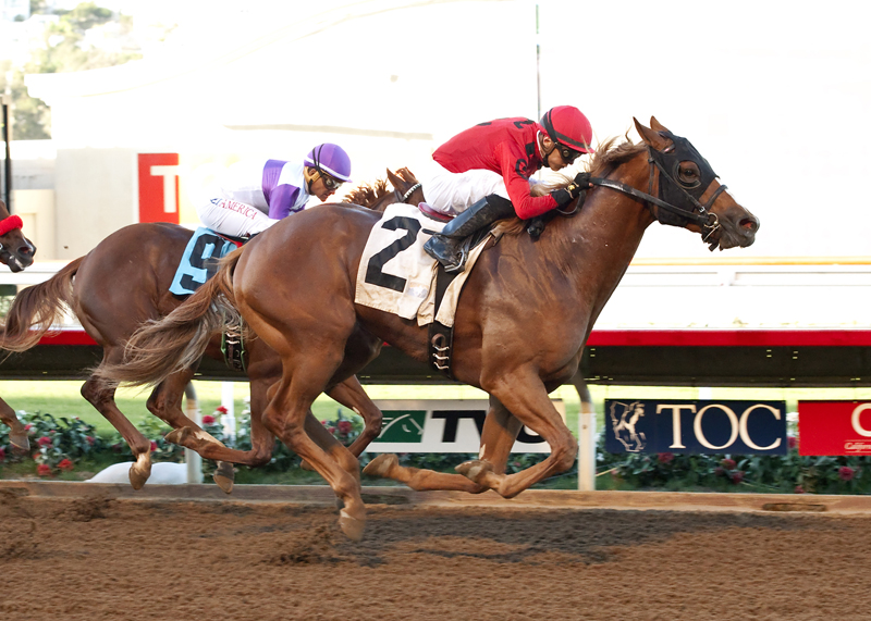Thoughts on Smokey Image's California Cup Derby Beyer