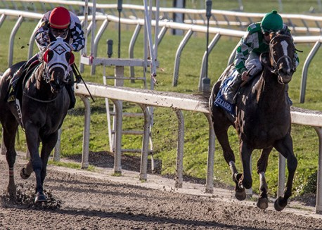 Rosemont Farm's Venus Valentine, right, sneaks through on the rail to win the Twinspires.com Rachel Alexandra Stakes (GrII). Corey Lanerie was the winning jockey. Photo By Alexander Barkoff / Hodges Phootography