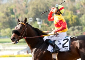 Jockey Mike Smith celebrates aboard Danzing Candy after their victory in the San Felipe Stakes (gr. II) at Santa Anita - © BENOIT PHOTO