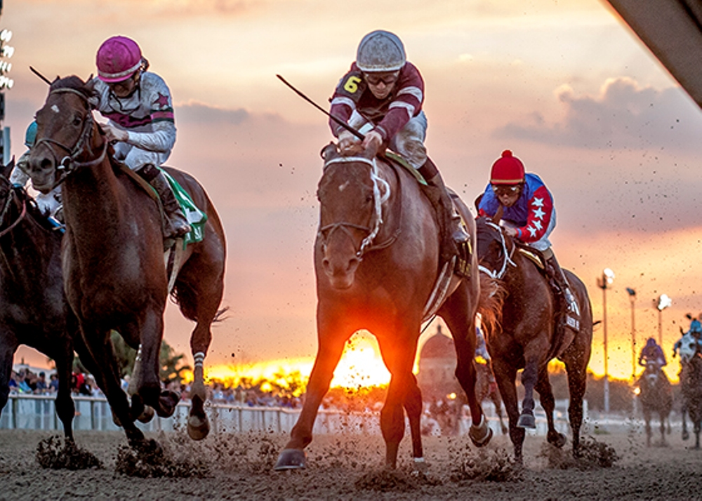 Thoughts on the Louisiana Derby Day All-Stakes Pick 4