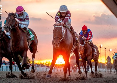 Gun Runner winning the Risen Star Stakes (gr. II) at Fair Grounds - Photo By Amanda Hodges Weir / Hodges Photography