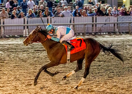 Mo Tom winning the LeComte Stakes (gr. III) at Fair Grounds - Photo by Amanda Weir Hodges / Hodges Photography