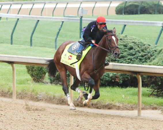 Brody's Cause working at Churchill Downs - Coady Photography
