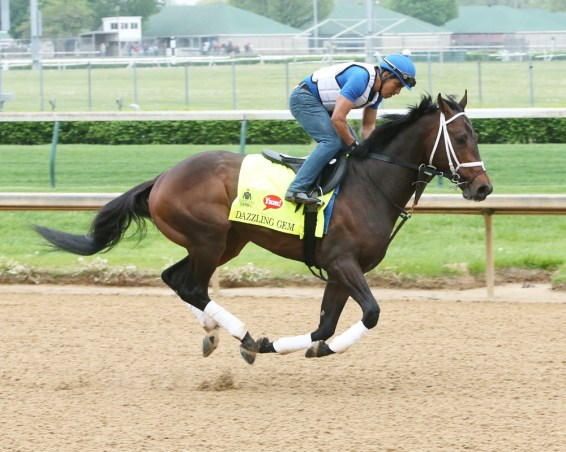 Dazzling Gem galloping at Churchill Downs - Coady Photography