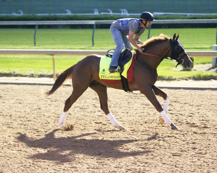 Fellowship galloping at Churchill Downs on April 20th - Coady Photography
