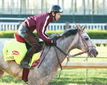 Lani galloping at Churchill Downs - Coady Photography/Churchill Downs