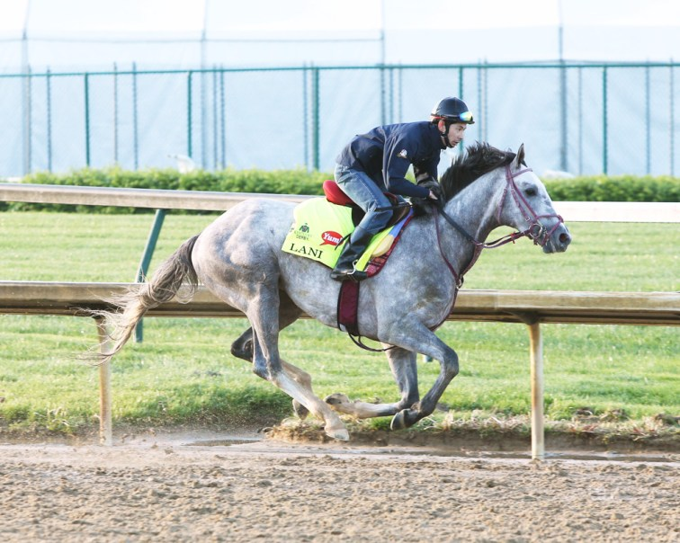 Lani galloping at Churchill Downs - Coady Photography