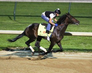 Mo Tom breezing at Churchill Downs on April 20th - Coady Photography