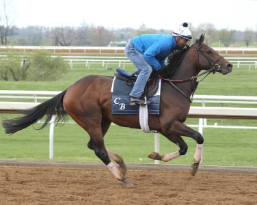 My Man Sam training at Keeneland - Keeneland Photo