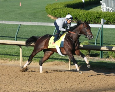 Shagaf breezing at Churchill Downs - Coady Photography