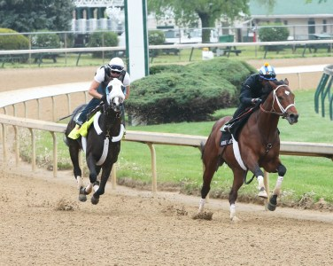 Tom's Ready working at Churchill Downs - Coady Photography
