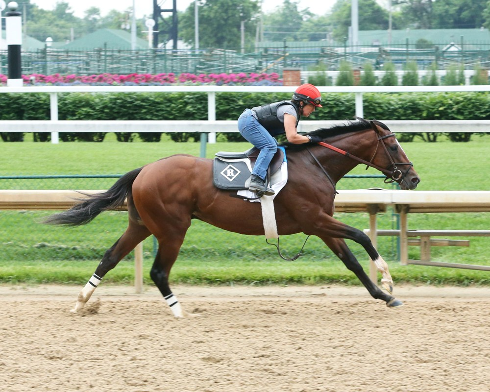 Brody's Cause, Cherry Wine Breeze for Belmont Stakes