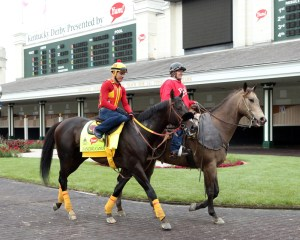 Danzing Candy schooling in the Churchill Downs paddock on May 4th - Coady Photography