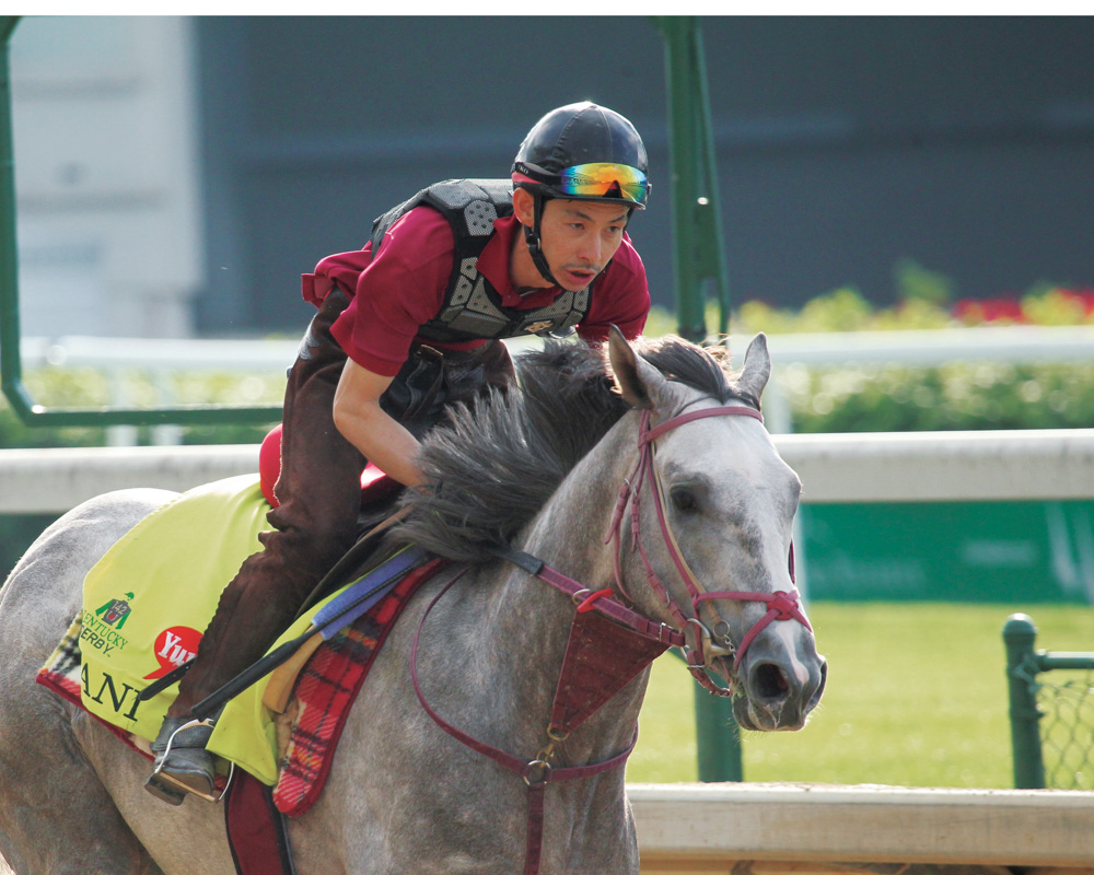 Lani Possible for the Preakness Stakes