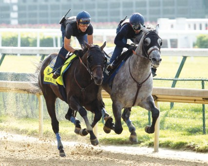 Mor Spirit breezing at Churchill Downs - Coady Photography