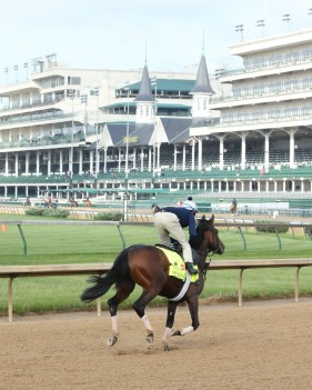 My Man Sam galloping at Churchill Downs - Coady Photography