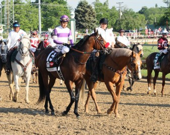 Nyquist heads to the starting gate for the Kentucky Derby - Coady Photography