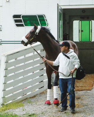 Trojan Nation arriving at Churchill Downs for the Kentucky Derby - Coady Photography
