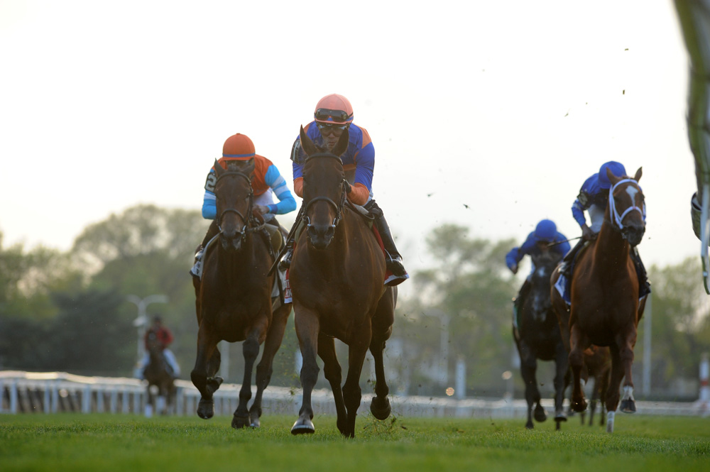 Sea Calisi Stands Out in New York Stakes