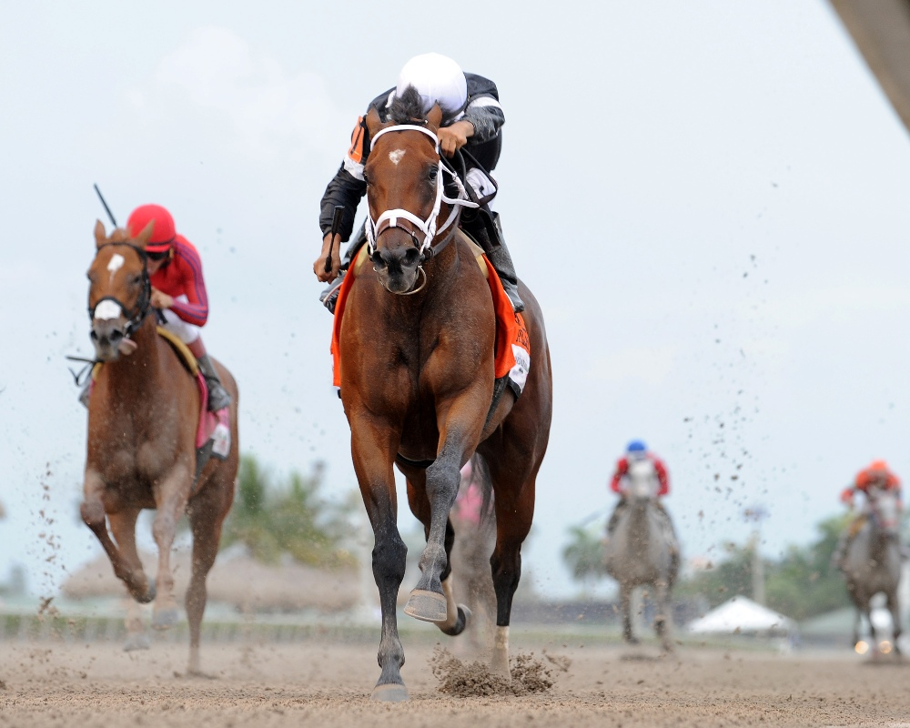 Spelling Again Could Target Groupie Doll Stakes at Ellis Park