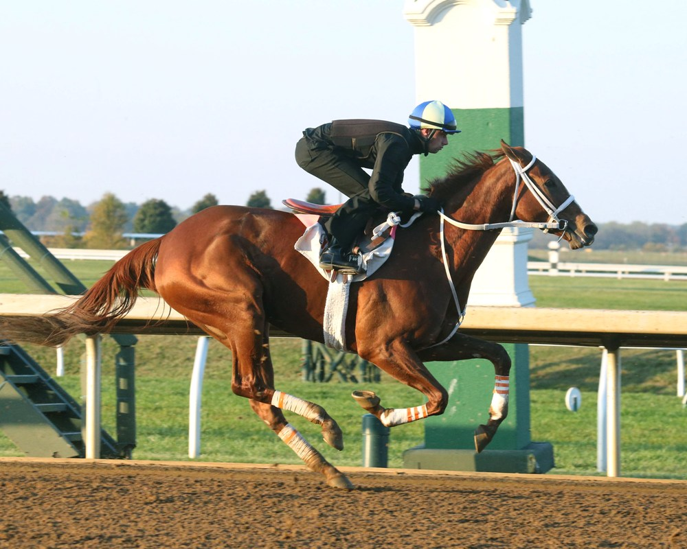Breeders' Cup Workouts Report: 10-29-16 (Keeneland Edition)
